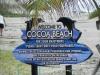 d. 26. Aug: Cocoa Beach